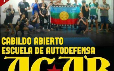 ACAB, la confusión que provocó el oficio de un diputado de Evópoli
