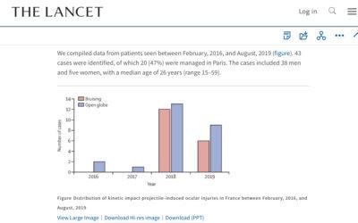 Las cifras desmienten a Coni Santa María: Francia registra 43 heridas oculares entre 2016 y 2019
