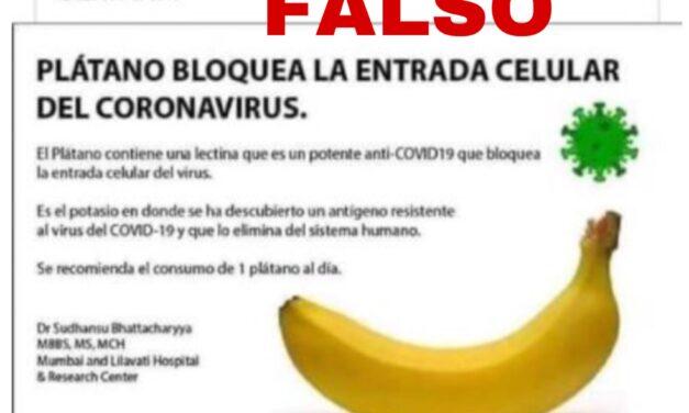 No, el plátano no impide el ingreso de CoVid19 al organismo