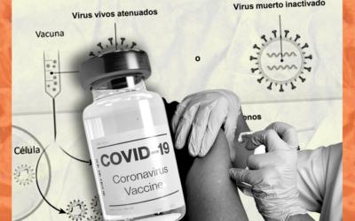 Cuál es la diferencia entre las vacunas de vector viral, virus inactivado y ARNm